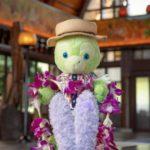 ハワイにステラルー登場!:アウラニディズニーリゾート