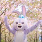 ステラルーの桜とのダンス:公式動画をどうぞ~上海ディズニーランド